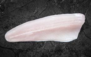 Rainbow Trout - skin-on filet