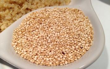 Quinoa - IP-Suisse
