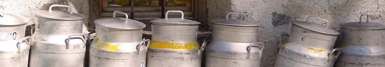 Produits laitiers - Oeufs